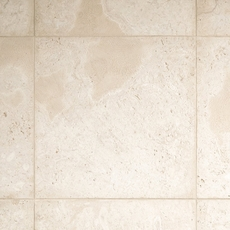 Semi Polished Coral Stone Tile