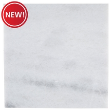 New! Bianco Neve Polished Marble Tile