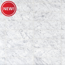 New! Bianco Carrara Honed Marble Tile