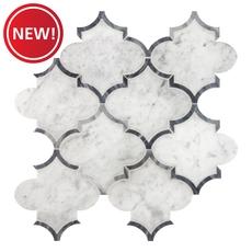 New! Provence Carrara Marble Mosaic