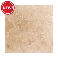 New! Naxos Honed Travertine Tile
