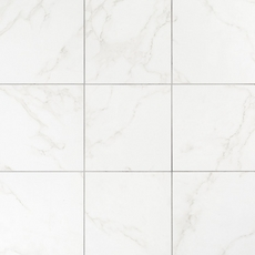 Carrara Polished Porcelain Tile