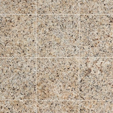 Yellow Star Granite Tile
