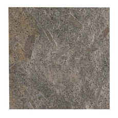 Silver Gray Honed Quartzite Tile