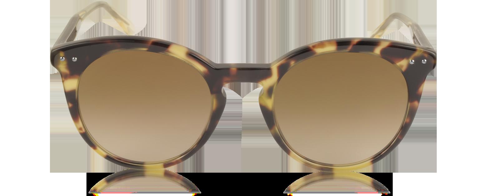 Accesorios - Bottega Veneta habana / tono marrón BV0096S Gafas de Sol para Mujer de Acetato Rare bv470017-015-01 JWVVXMX