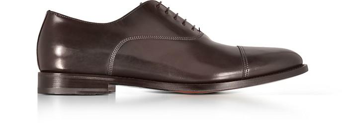Wilson Dark Brown Leather Oxford Shoes - Santoni