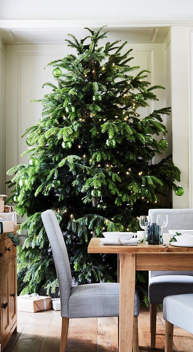 How-to-choose-and-decorate-your-Christmas-tree_real-tree