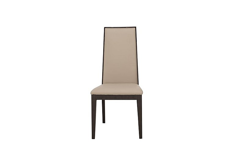 Lorenzo Dining Chair in  on Furniture Village