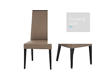 Marco Polo Pair of Dining Chairs in  on Furniture Village