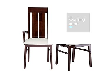 Palermo Pair of Arm Dining Chairs in  on Furniture Village