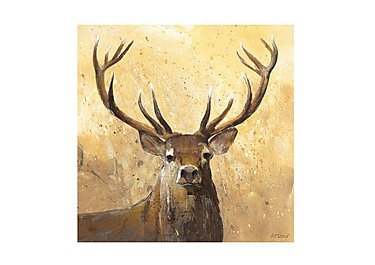 The Stag  Picture in  on Furniture Village