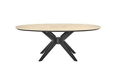 Velodrome Oval Coffee Table in  on Furniture Village