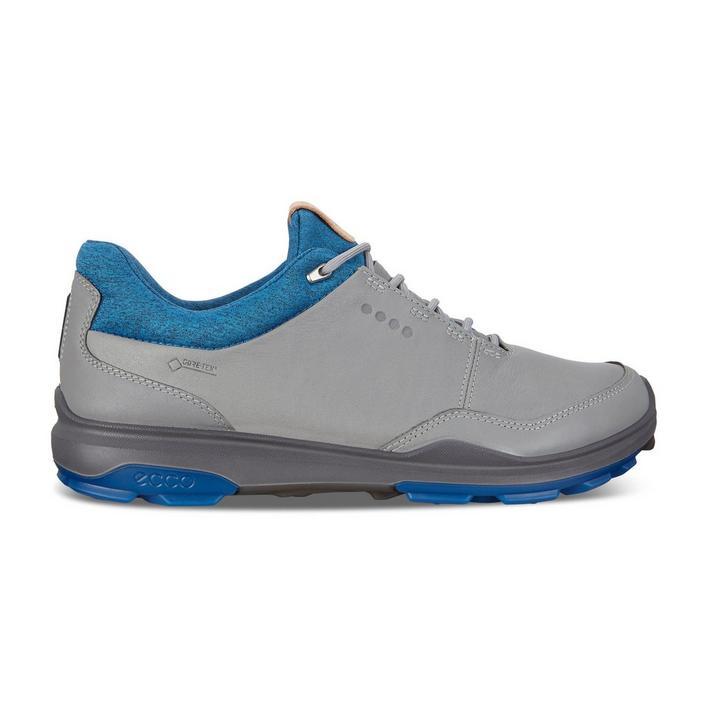Chaussures Goretex Biom Hybrid 3 sans crampons pour hommes - Gris/Bleu