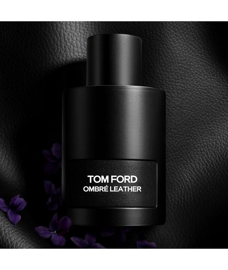 Ombré Leather image 1