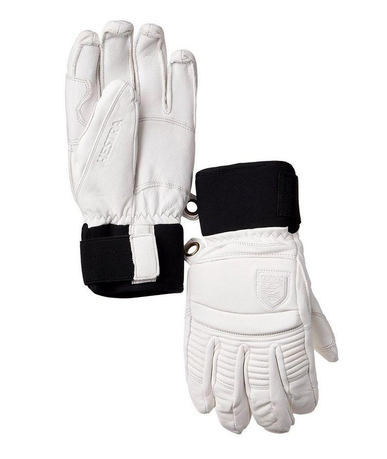 Alpine Pro Gloves image 0