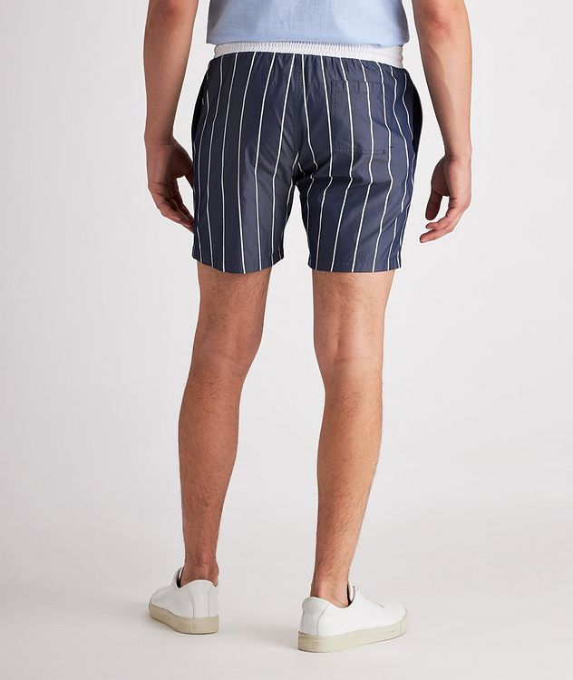 Striped Swim Trunks picture 3