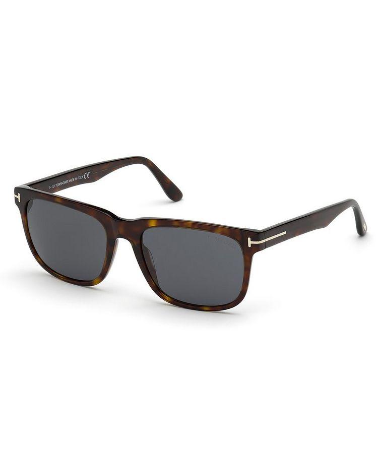 Stephenson Sunglasses image 0
