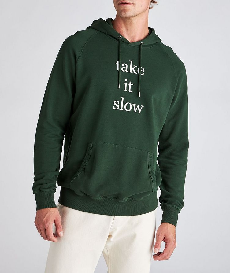 Ray Cotton Hoodie image 1