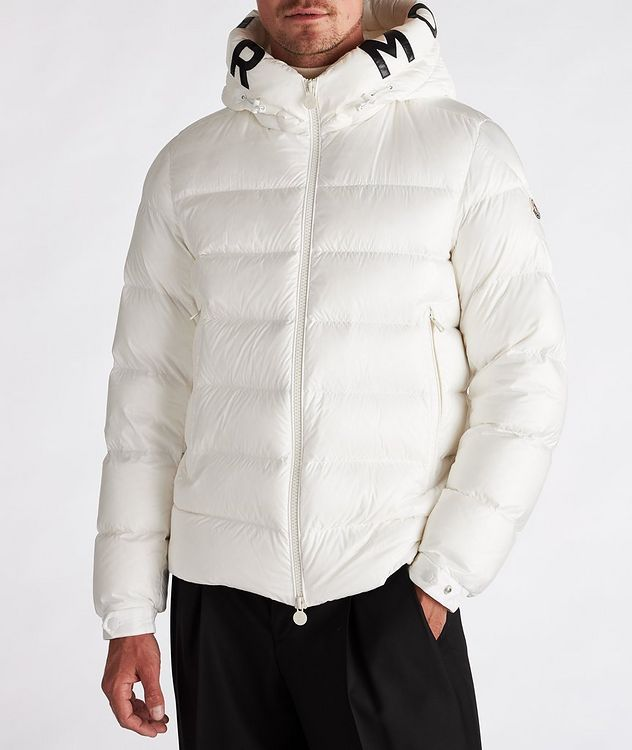 Salzman Hooded Down Puffer Jacket picture 2