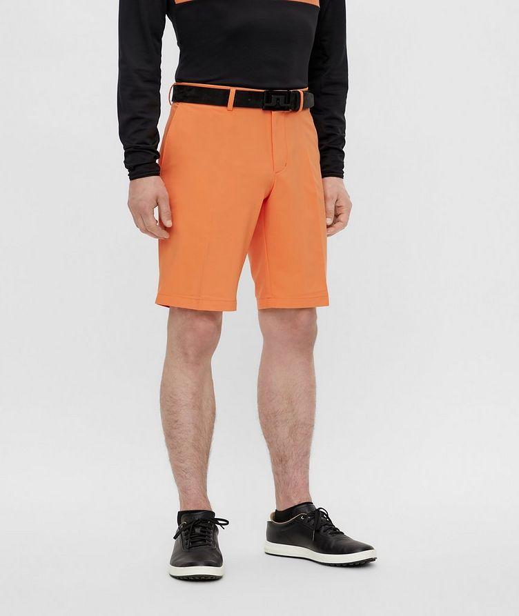 Somle Golf Shorts image 2