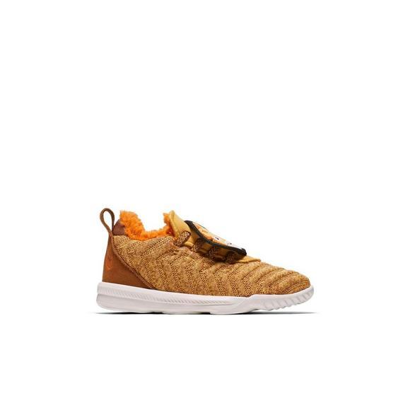 e74a6f3971be Nike LeBron 16