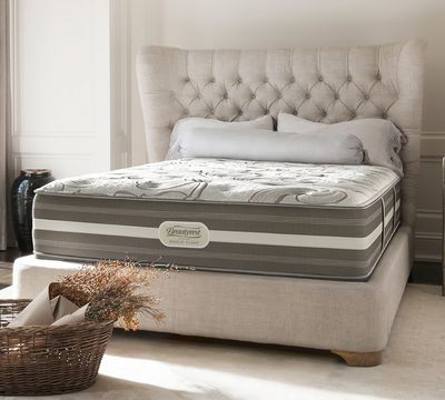 "World Class Resonance 14.5"" Plush Mattress"