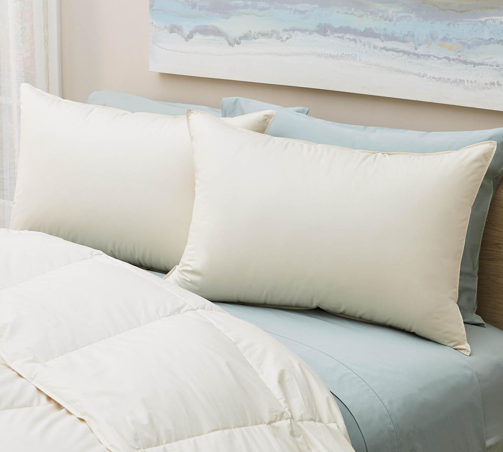 Lux Living Naturals Queen Organic Soft White Down Pillow