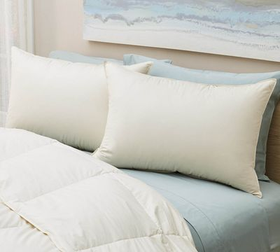 Organic Firm White Down Pillow