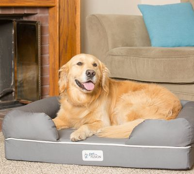 Ultimate Pet Bed and Lounge