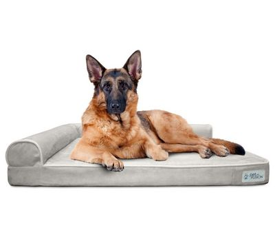 BetterLounge Dog Bed