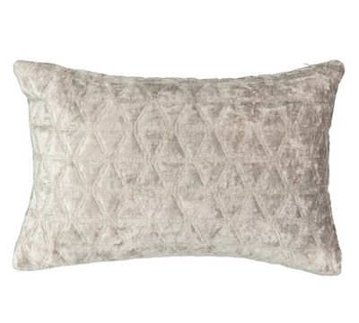 Social Call Velvet Decorative Pillow