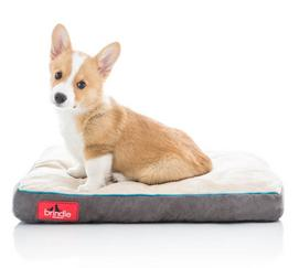 Plush Shredded Memory Foam Pet Bed