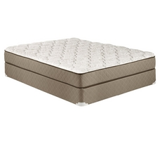 Hampton & Rhodes 9 Inch Plush Mattress