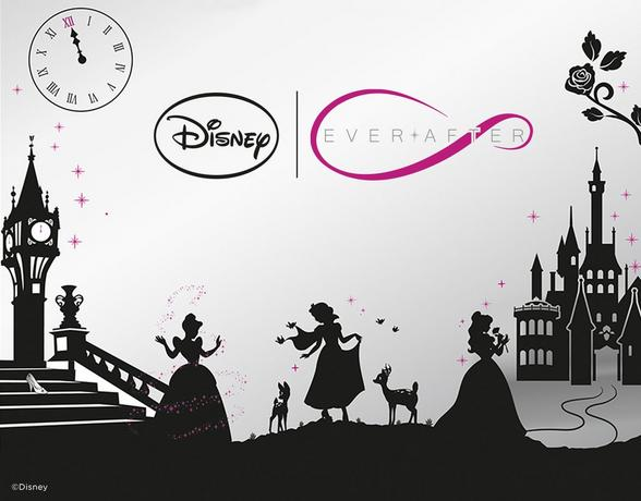 Disney Ever After - Shop Now
