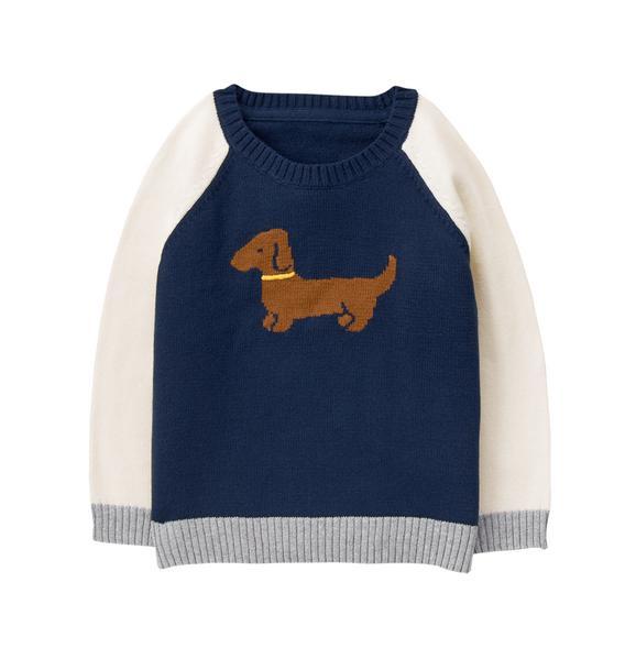Dachshund Sweater