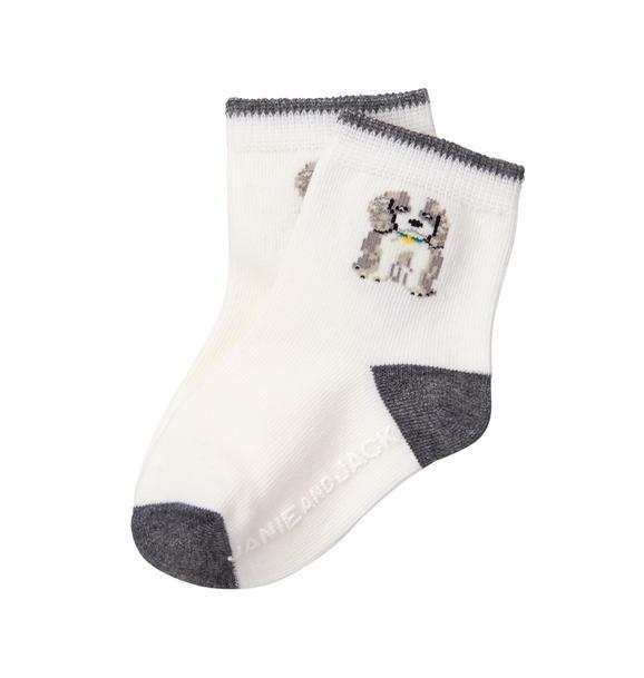 Dog Sock