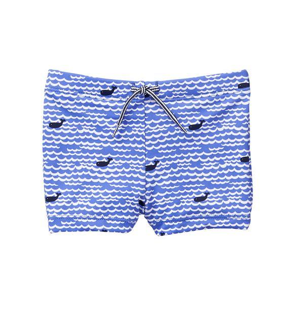 Whale Swim Short