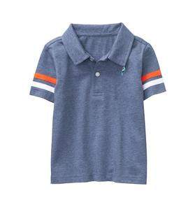 Embroidered Striped Sleeve Polo