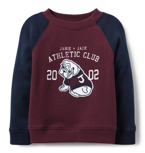 Varsity Bulldog Sweatshirt