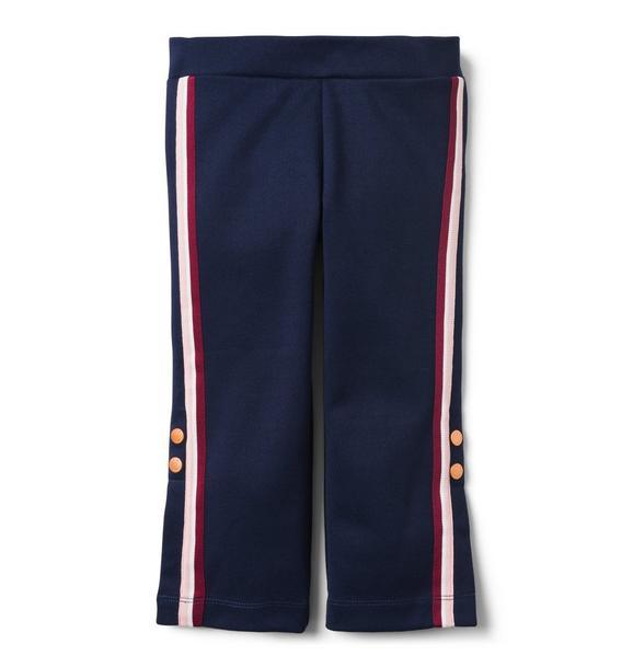 Wide-Leg Striped Pant