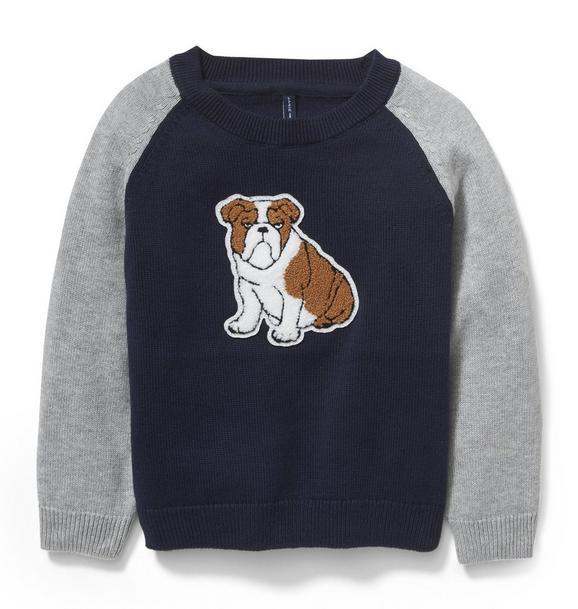 Bulldog Raglan Sweater