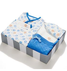 6-Piece Lion Print Box