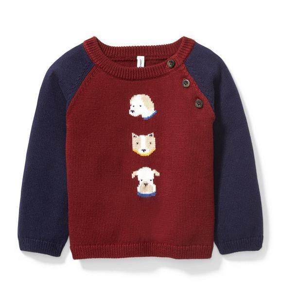 Raglan Dog Sweater