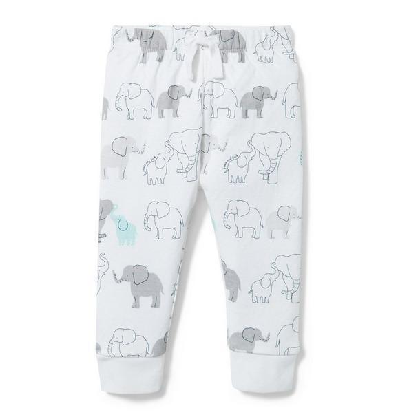 Elephant Print Jogger