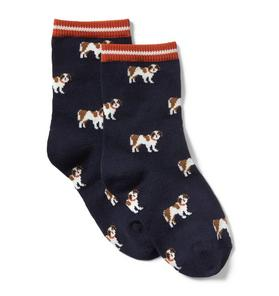 Saint Bernard Dog Sock