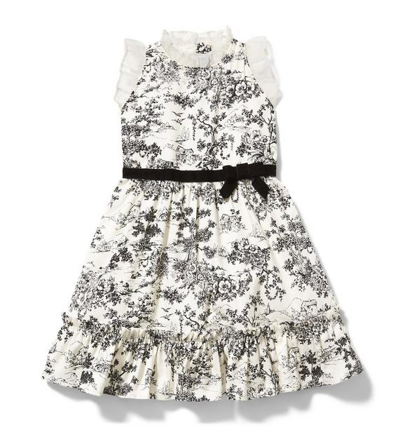 Ruffle Trim Toile Dress