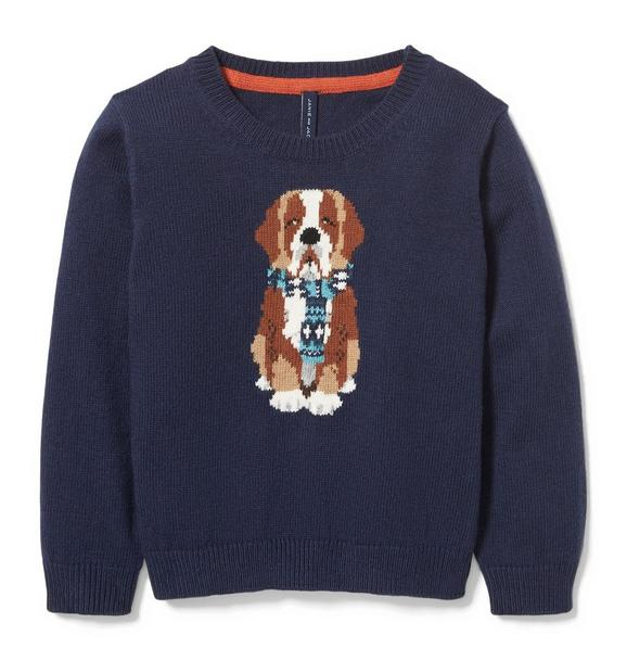 Saint Bernard Dog Pullover