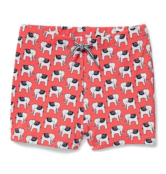Elephant Print Swim Trunk