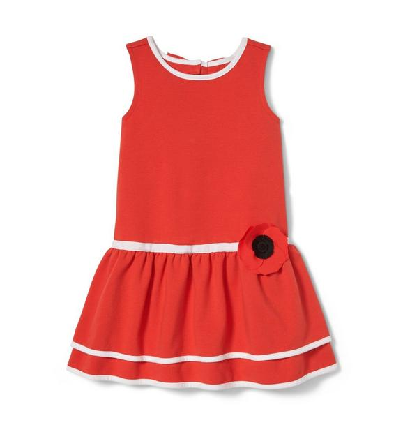 Dropwaist Poppy Dress