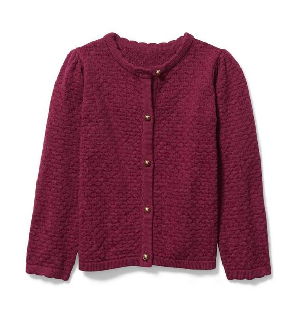 Scalloped Pointelle Cardigan